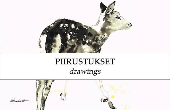 piirustukset, drawings